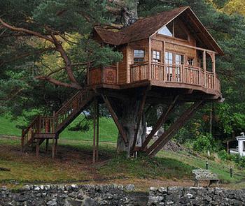 Treehouse - lombház